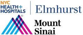 Mount Sinai Services at Elmhurst Hospital Center
